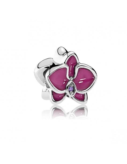 Charm orquídea rosa